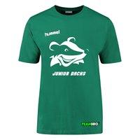 HSG Freiberg Juniordachs Shirt Unisex grün